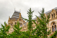 Travel-London-Natural-History-Museum
